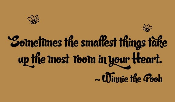 Image result for sometimes the smallest things winnie the pooh