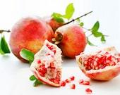 pomegranate photograph print