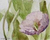 Tulips art print Hahnemuhle spring flowers pastel purple