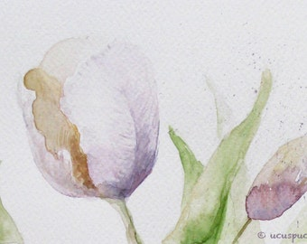 Pastel Tulips Watercolor Giclee Print - Botanical Art