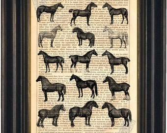 Horses Antique Engraving of Horses Print on Vintage 1860's Repurposed Page mixed media digital