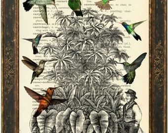Gardener with Hummingbirds Print on repurposed 1900's English French Lexicon Page