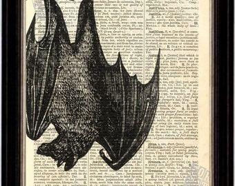 Hanging Fruit Bat Print on Upcycled 1896 Latin English Dictionary Page