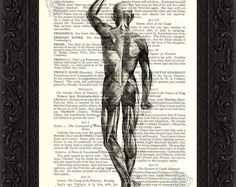 Back view of Human Muscles  Print on upcycled Vintage  Page