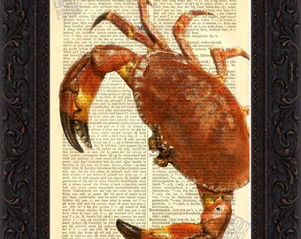 Stone Crab  Altered  Art Print on Vintage Repurposed Dictionary Page