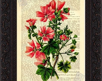Common Dwarf Mallow Flower Print on upcycled Vintage Dictionary  Page mixed media  digital
