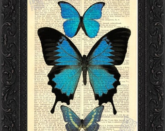 Vibrant Blue Butterflies Print on vintage upcycled dictionary page mixed media digital