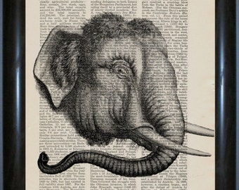 Elephant Head Engraving on repurposed 1910's Harmsworth encyclopaedia Page