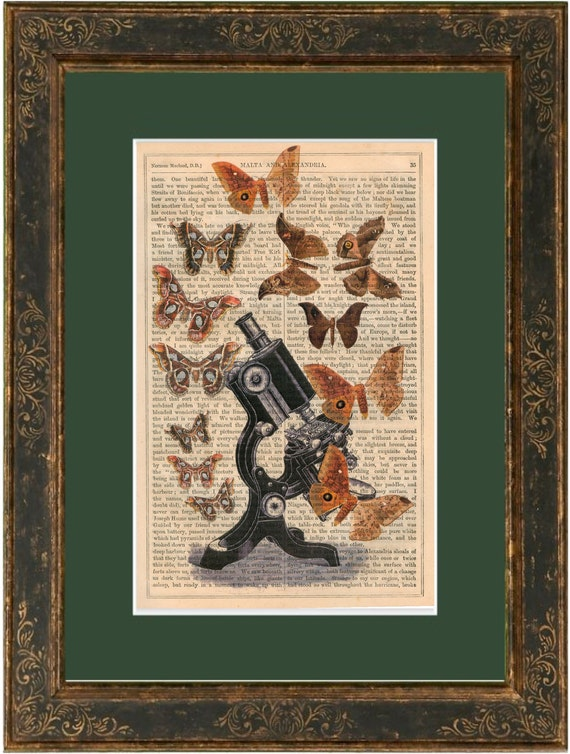 Vintage Microscope and Butterflies print on vintage (1860's) upcycled book page mixed media digital