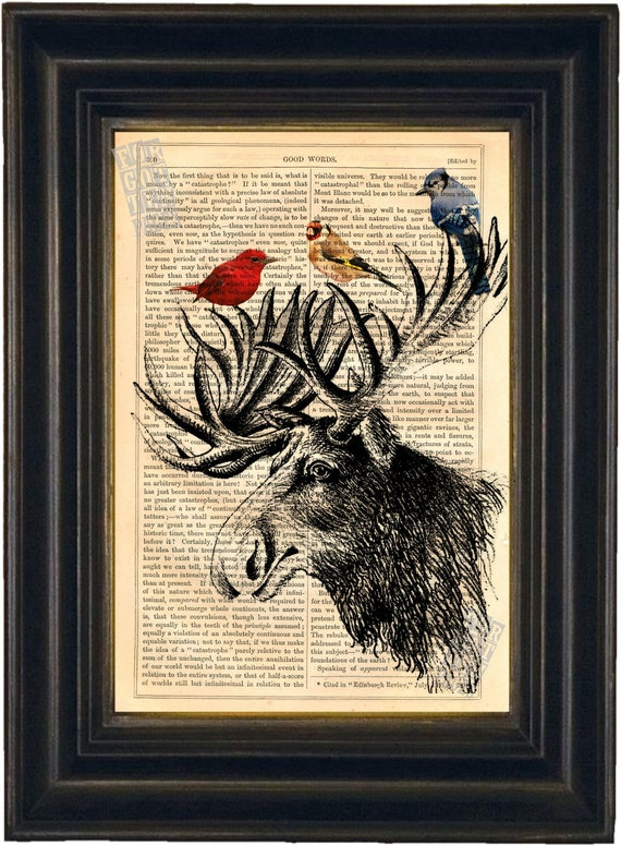 Moose head with colourful Birds Mixed Media Print on vintage upcycled page