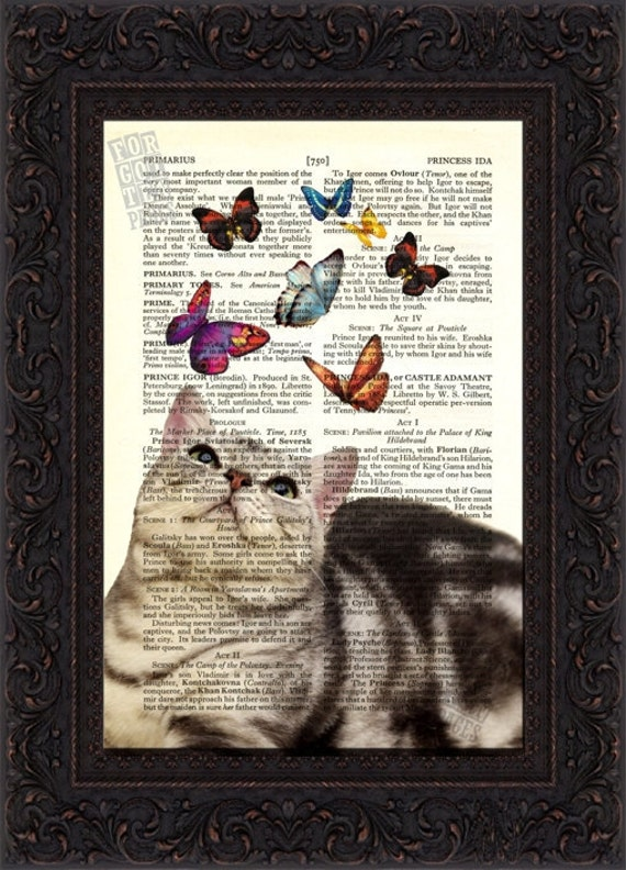 Cat Print Tortoiseshell Cat looking at Colored Butterflies Print on repurposed vintage  page