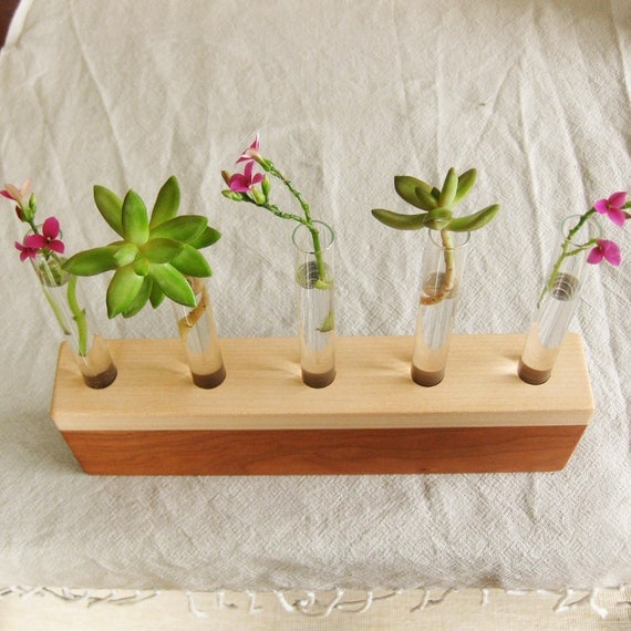 Bud Vase - five mini bud vase holder in salvaged reclaimed cherry and maple wood V158
