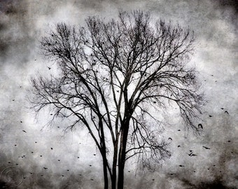 Blackbird Print The Calling, Surreal Flying Blackbirds, Gathering Blackbird Flock, Tree Print, Dark Bird Art, Blackbird