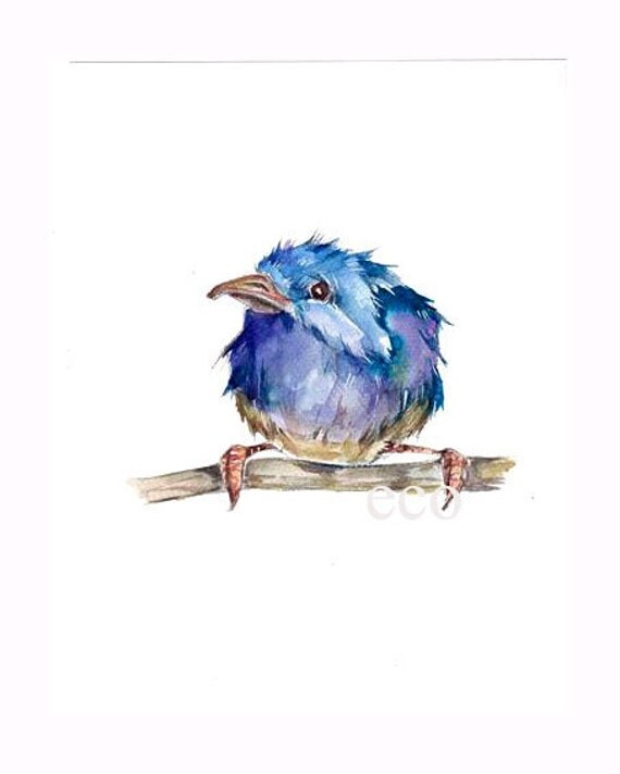5x7 ORiGINAL watercolor painting of the BLUE WREN