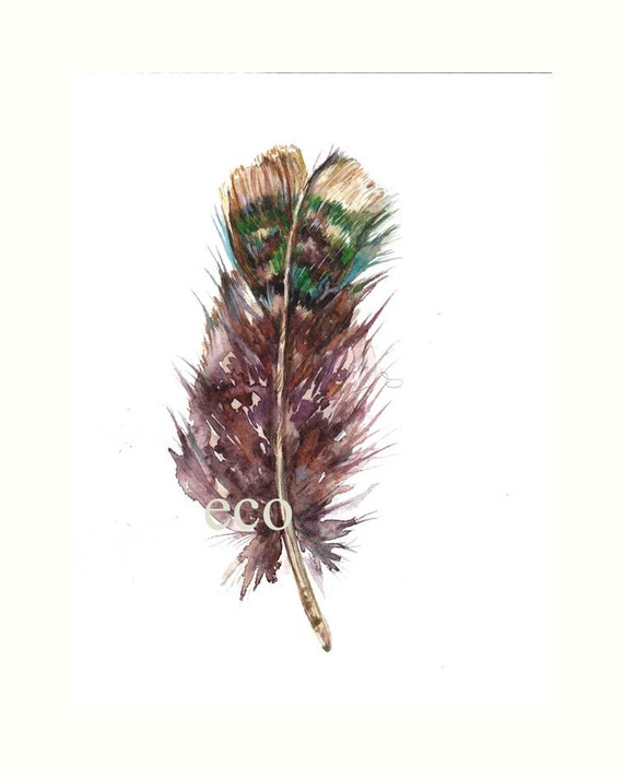 5x7 inch Original Watercolor FEATHER painting