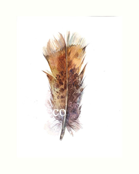 5x7 inch Original Watercolor Garden FEATHER painting