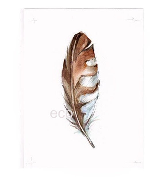 Northen American Birds Feathers SawWet 5x7 inch ORiGINAL Watercolor painting
