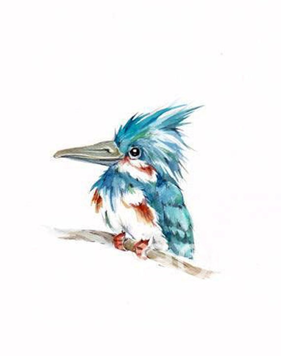 8x10 ORIGINAL KINGFISHER  detailed painting