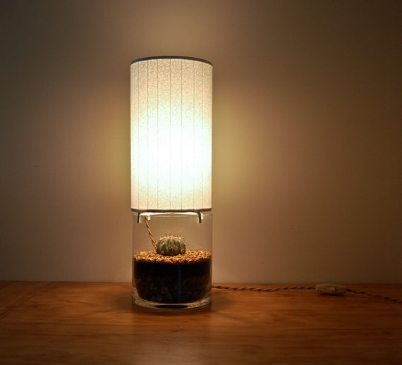 Terrarium/Display Column Table Lamp