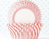 Red Pin Stripe Cupcake Liner