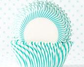 Turquoise Pin Stripe Cupcake Liner