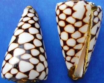 Sea Shell Pendants, Gold-Plated (2 pcs.)
