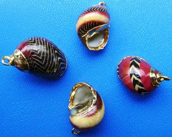 Reserved Listing for Katy Pember - Nerita Sea Shell Jewelry Components, Gold-Plated (10 pcs.)