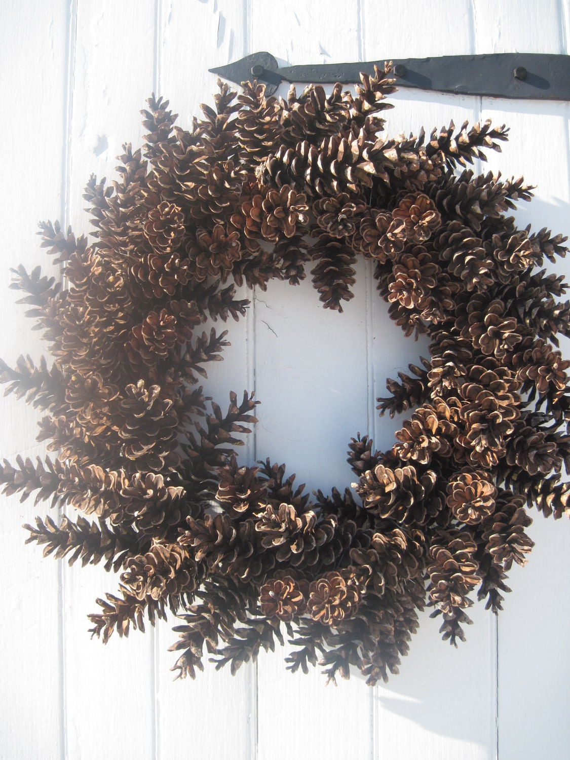Pinecone wreath fresh large maine pinecones great for year for Large christmas pine cones