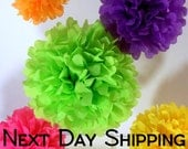 Tissue Paper Pom Poms - 5 Piece - Ships within ONE Business Day - Tissue Poms - PomPom - Tissue Pom Poms - Choose Your Colors!