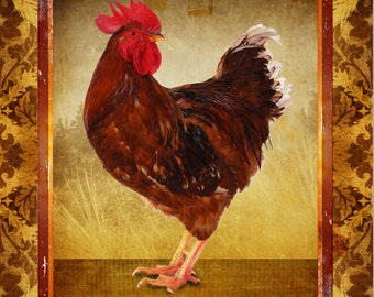 "Rooster Rhode Island Red Chicken Brown Gold Large 16"" x 20"" Canvas-Wrapped Frame: Rooster Two"