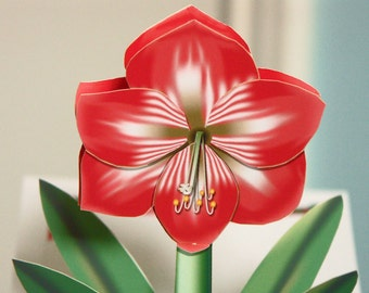Valentines Day Card Pop-up Amaryllis card