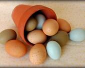 Blown Chicken Eggs: Brown-Speckled, Olive & Blue - 1 Dozen