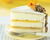 Whipped Lemon Pistachio Cake Body Butter 4fl.oz