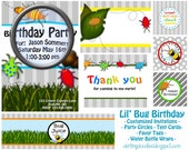Lil' Bug Birthday Party Package