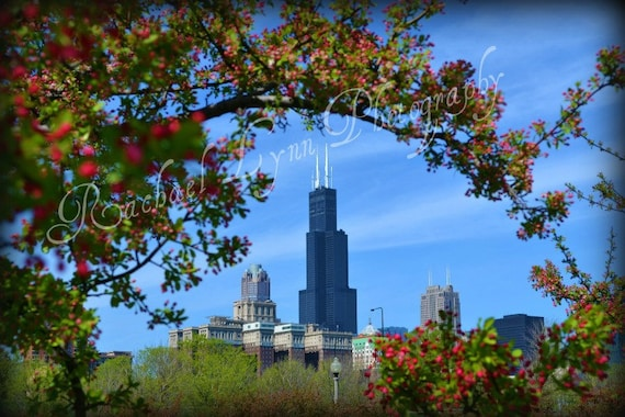 Chicago in Bloom Fine Art Print Photography 8 x 10