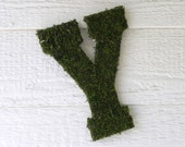 Moss Letter Wedding Monogram Initial A-Z Personalized Wall Hanging