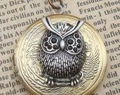 Steampunk Silver Owl Locket Necklace Vintage Style Original Design