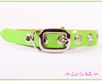 Spring Green Leather Dog Collar w Grommets
