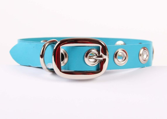Turquoise Leather Dog Collar with Grommets