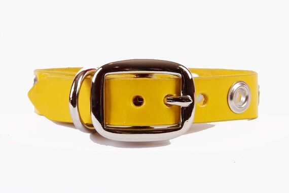 Yellow Leather Dog Collar with Grommets