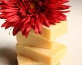 Organic Carotene Hair Treatment Shampoo Bar