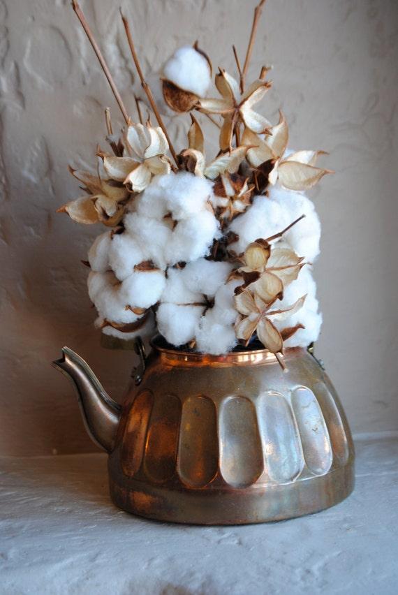 Cotton Bolls 10 And Pods 10 For Flower Arrangements