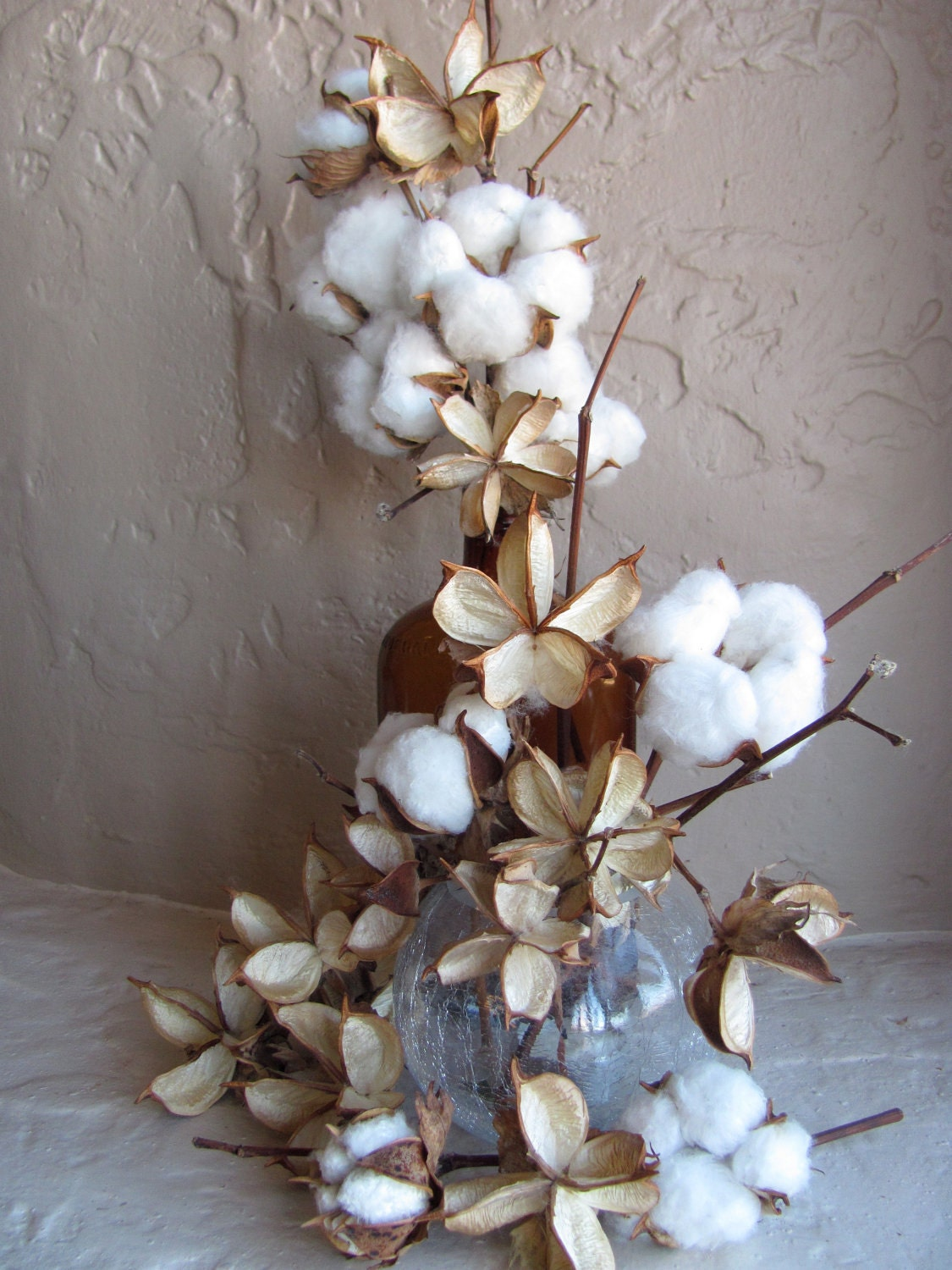 cotton plant divorced singles Introduction is a vegetable fibre obtained from the mature capsule of the cotton plant, a shrub about 40 cm high, with leaves and flowers of a red or yellow colour.