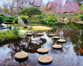 Japanese Garden Reflections. Photography Print 8x10 Fine Art Asian Landscape