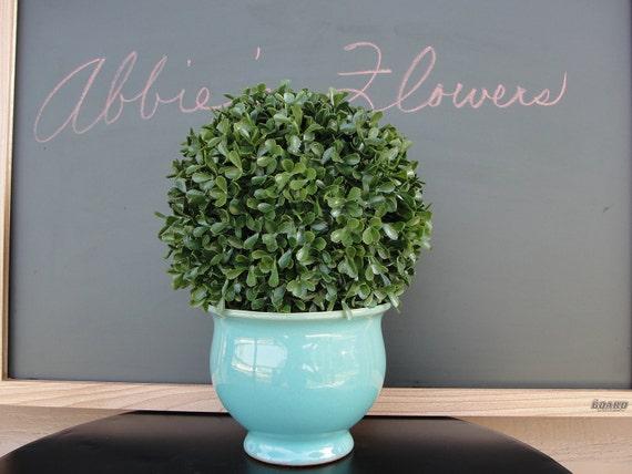 Topiary Boxwood in Aqua Ceramic Pot