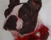 Hand Knit dog collar - 13 inch