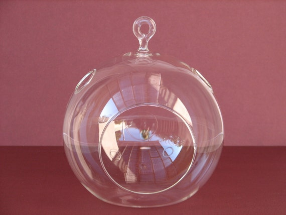 "2 Glass Globes- Make Your Own Terrarium- 5.25 "" in Diameter, Air plants, Succulent, Glass Terrarium,Terrarium Supplies"