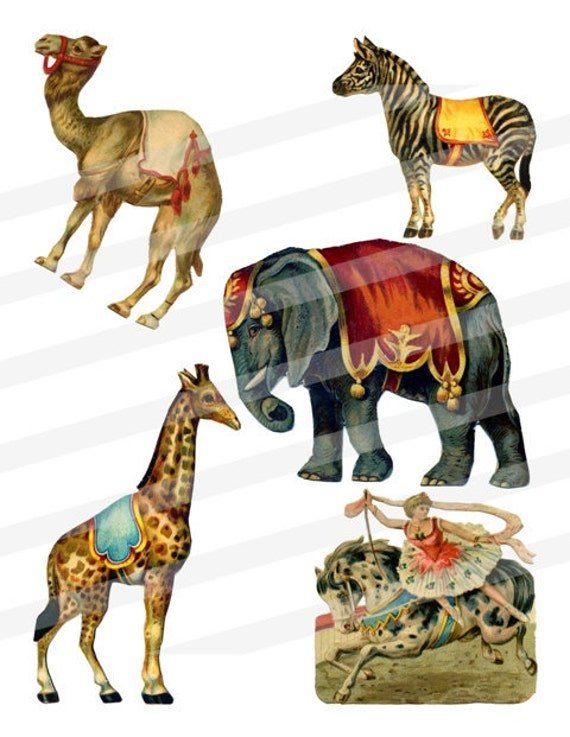 L Elephant Carnival Of The Animals Items similar t...