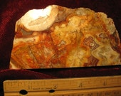 Lapidary slab - Mexican Crazy Lace agate polished - free shipping usa