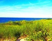 I See Sea Street Beach!